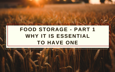Food Storage – Part 1: Why it is essential to have one!