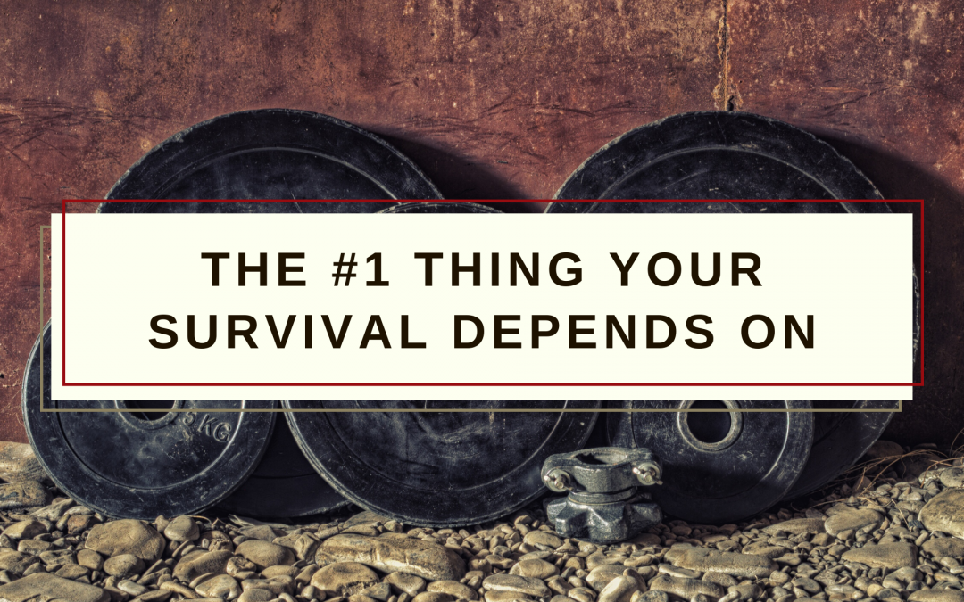 Why Physical Fitness is the #1 Thing Your Survival Depends on!