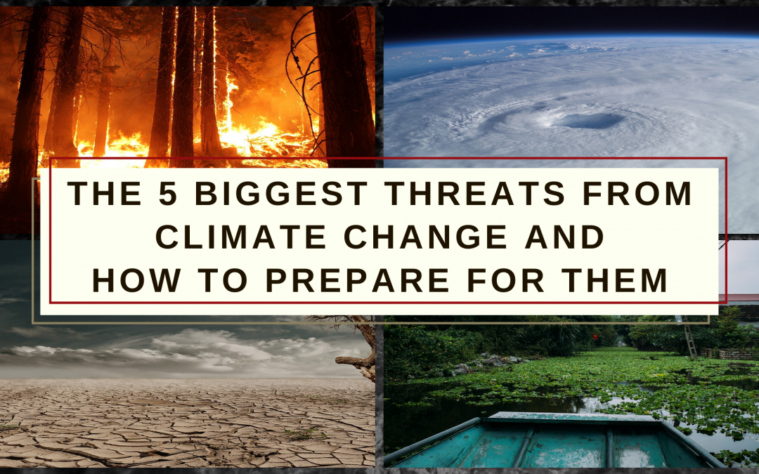 The 5 Biggest Imminent Threats from Climate Change – and How to Prepare for Them