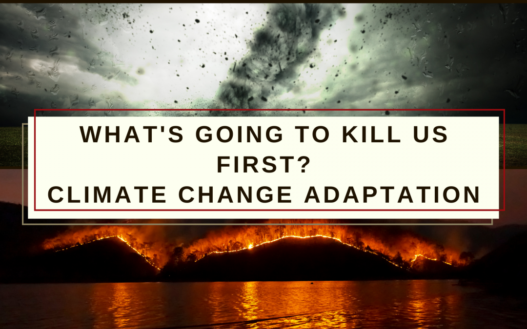 Adapting to Climate Change – What's Going to Kill Us First?